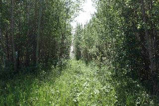 Photo 1: TWP 494 RR 42: Rural Leduc County Rural Land/Vacant Lot for sale : MLS®# E4252228