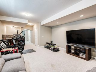 Photo 25: 2219 32 Avenue SW in Calgary: Richmond Detached for sale : MLS®# A1129175