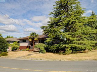 Photo 22: 738 Cameo St in VICTORIA: SE High Quadra House for sale (Saanich East)  : MLS®# 798445