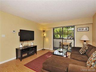 Photo 4: 101 2610 Graham St in VICTORIA: Vi Hillside Condo for sale (Victoria)  : MLS®# 739028