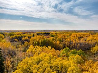 Photo 1: 31 Grove Lane in Rural Rocky View County: Rural Rocky View MD Residential Land for sale : MLS®# A1097684