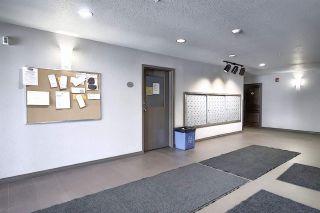 Photo 34: 146 301 CLAREVIEW STATION Drive in Edmonton: Zone 35 Condo for sale : MLS®# E4246727