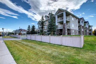 Photo 50: 344 428 Chaparral Ravine View SE in Calgary: Chaparral Apartment for sale : MLS®# A1152351