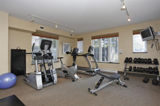 Photo 18: 94 20875 80 AVENUE in Langley: Willoughby Heights Townhouse for sale : MLS®# R2308028