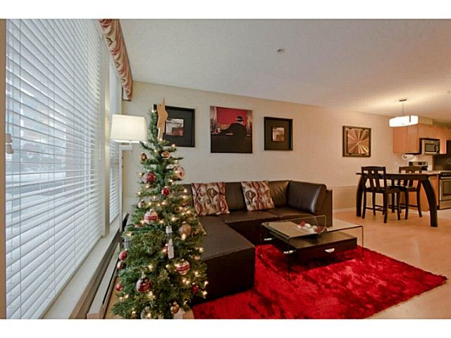 Photo 2: Photos: # 209 2636 E HASTINGS ST in Vancouver: Renfrew VE Condo for sale (Vancouver East)  : MLS®# V1039275