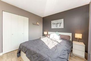Photo 22: 4107 55 Street: Wetaskiwin House for sale : MLS®# E4262278