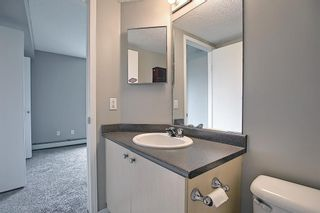 Photo 34: 6413 304 Mackenzie Way SW: Airdrie Apartment for sale : MLS®# A1128019