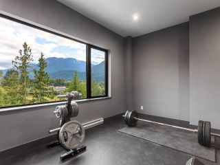 Photo 13: 41165 ROCKRIDGE Place in Squamish: Tantalus House for sale : MLS®# R2167179