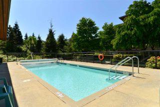"""Photo 19: 127 15918 26 Avenue in Surrey: Grandview Surrey Condo for sale in """"The Morgan"""" (South Surrey White Rock)  : MLS®# R2267691"""