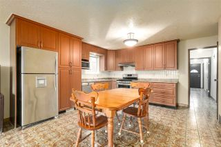Photo 22: 2740 KITCHENER Street in Vancouver: Renfrew VE House for sale (Vancouver East)  : MLS®# R2541957