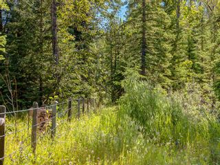 Photo 10: 20 34364 RANGE ROAD 42: Rural Mountain View County Land for sale : MLS®# A1017805