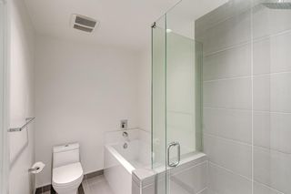 Photo 29: 218 305 18 Avenue SW in Calgary: Mission Apartment for sale : MLS®# A1127877