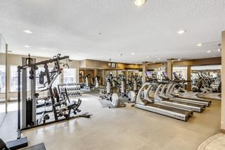 Photo 24: 340 10 DISCOVERY RIDGE Close SW in Calgary: Discovery Ridge Apartment for sale : MLS®# C4295828