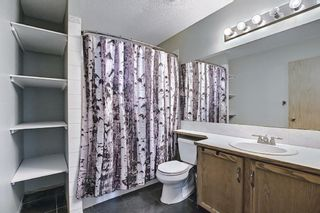 Photo 24: 23 Applecrest Court SE in Calgary: Applewood Park Detached for sale : MLS®# A1079523
