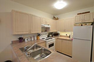 Photo 11: 212 1485 Garnet Rd in : SE Cedar Hill Condo for sale (Saanich East)  : MLS®# 850938