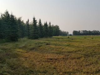 Photo 9: #43-25527- Twp Road 511A Road: Rural Parkland County Rural Land/Vacant Lot for sale : MLS®# E4226843