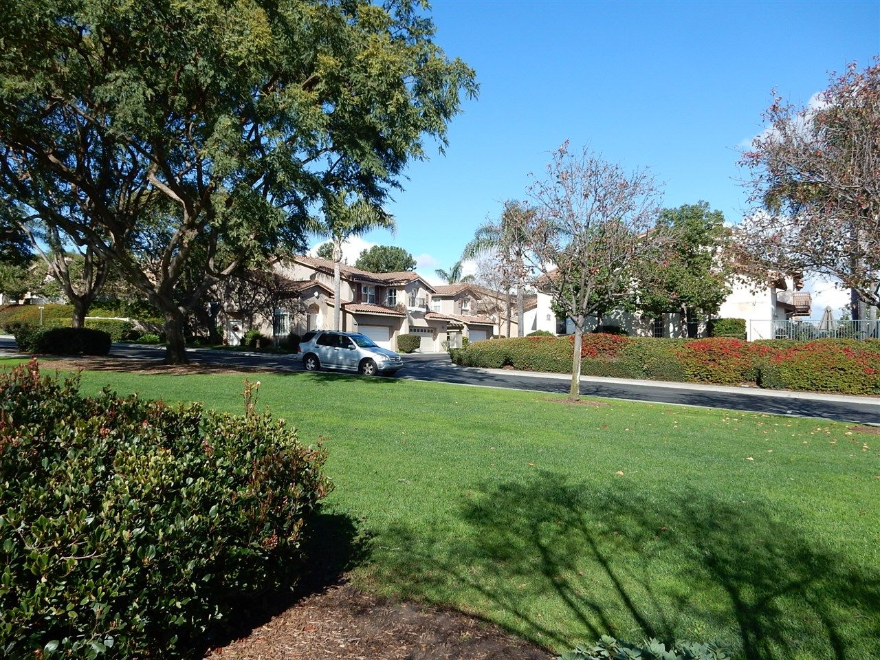 Photo 16: Photos: AVIARA Townhouse for rent : 3 bedrooms : 1662 Harrier Ct in Carlsbad