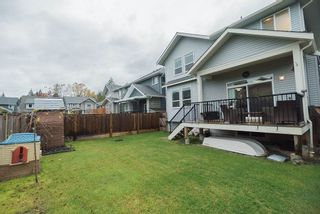 """Photo 15: 24412 113A Avenue in Maple Ridge: Cottonwood MR House for sale in """"MONTGOMERY ACRES"""" : MLS®# R2222184"""