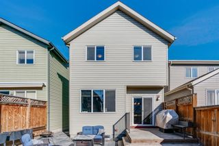 Photo 29: 81 Chaparral Valley Park SE in Calgary: Chaparral Detached for sale : MLS®# A1080967