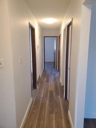 Photo 3: 6805 36A Avenue in Edmonton: Zone 29 House Half Duplex for sale : MLS®# E4238615