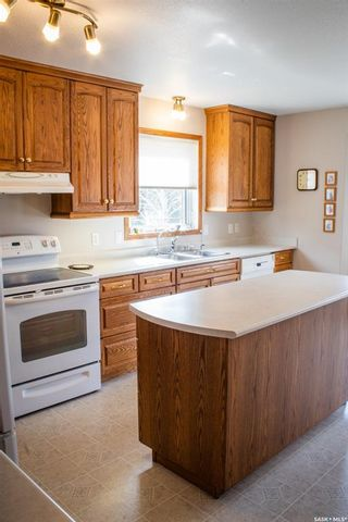 Photo 6: 111 3rd Avenue in St. Brieux: Residential for sale : MLS®# SK854889