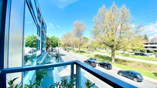 Photo 12: 205 6333 WEST BOULEVARD in Vancouver: Kerrisdale Condo for sale (Vancouver West)  : MLS®# R2603919