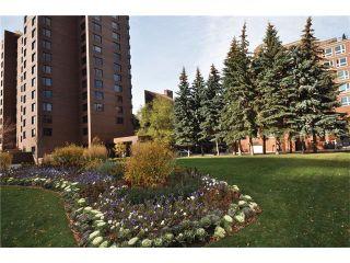 Photo 18: 301D 500 EAU CLAIRE Avenue SW in Calgary: Eau Claire Condo for sale : MLS®# C4043747