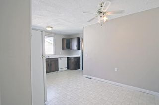 Photo 15: 132 Mardale Crescent NE in Calgary: Marlborough Detached for sale : MLS®# A1146772
