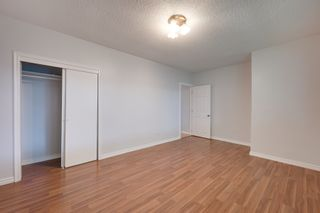 Photo 7: 12123 61 Street NW in Edmonton: House for sale : MLS®# E4166111