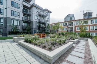 Photo 17: R2489122 - 108 - 621 REGAN AVE, COQUITLAM CONDO