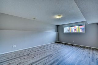Photo 24: 123 Sagewood Grove SW: Airdrie Detached for sale : MLS®# A1044678