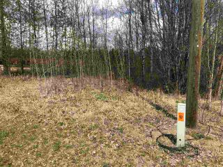 Photo 2: 93-15065 Twp Rd 470: Rural Wetaskiwin County Rural Land/Vacant Lot for sale : MLS®# E4243875