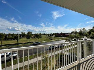 Photo 14: 302 17404 64 Avenue in Edmonton: Zone 20 Condo for sale : MLS®# E4254812