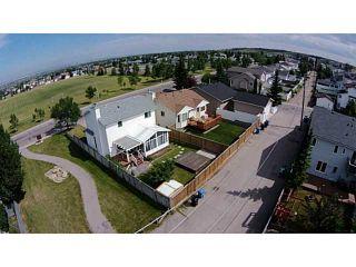 Photo 19: 483 MACEWAN Drive NW in CALGARY: MacEwan Glen Residential Detached Single Family for sale (Calgary)  : MLS®# C3627449