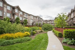 """Photo 23: 99 10151 240 Street in Maple Ridge: Albion Townhouse for sale in """"Albion Station"""" : MLS®# R2581928"""