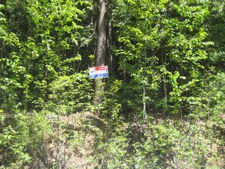 Photo 10: Lot 23 Vickers Trail in Anglemont: Land Only for sale : MLS®# 10011652