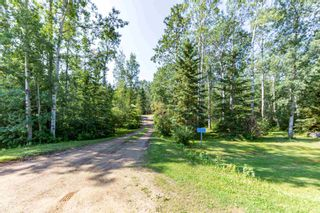 Photo 25: 46 274022 Twp 480: Rural Wetaskiwin County House for sale : MLS®# E4255958