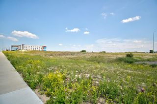 Photo 18: 11124 15 Street NE in Calgary: Stoney 1 Industrial Land for sale : MLS®# A1128526