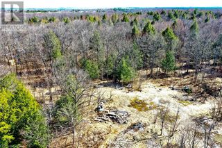 Photo 6: 0 COUNTY ROAD 36 in Bobcaygeon: Vacant Land for sale : MLS®# 40095128