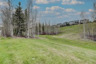 Photo 49: 57 Discovery Ridge Hill SW in Calgary: Discovery Ridge Detached for sale : MLS®# A1111834
