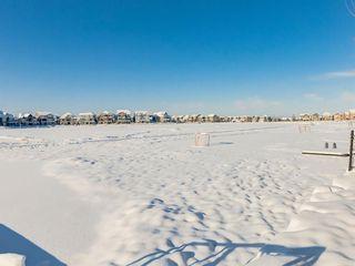 Photo 44: 117 Auburn Shores Way SE in Calgary: Auburn Bay Detached for sale : MLS®# A1066461