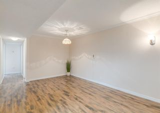 Photo 20: 3411 Doverthorn Road SE in Calgary: Dover Semi Detached for sale : MLS®# A1126939