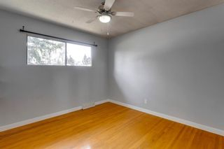 Photo 18: 380 Alcott Crescent SE in Calgary: Acadia Detached for sale : MLS®# A1130065
