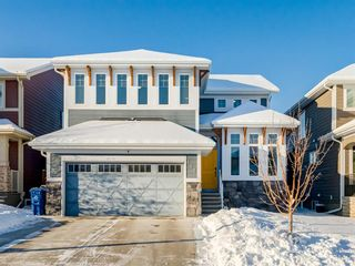 Main Photo: 117 Auburn Shores Way SE in Calgary: Auburn Bay Detached for sale : MLS®# A1066461
