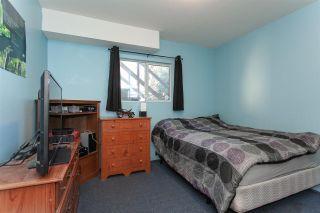 Photo 12: 20557 114 Avenue in Maple Ridge: Southwest Maple Ridge House for sale : MLS®# R2327151
