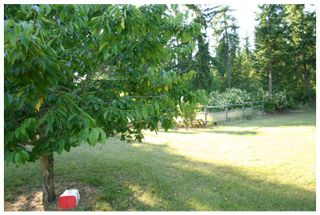 Photo 27: 3040 Fosbery Road: White Lake House for sale (Shuswap)  : MLS®# 101429927