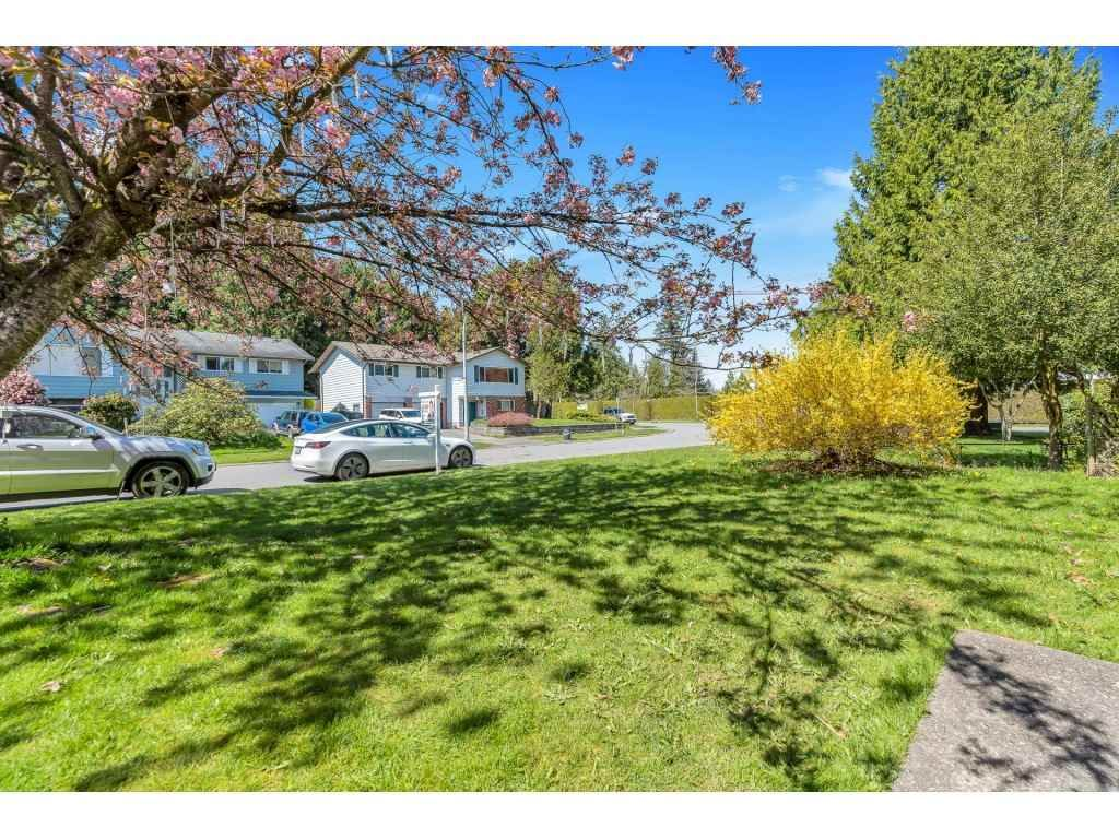 Photo 14: Photos: 10276 145 Street in Surrey: Guildford House for sale (North Surrey)  : MLS®# R2566192