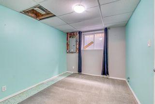 Photo 31: 278 Elgin View SE in Calgary: McKenzie Towne Semi Detached for sale : MLS®# A1121508