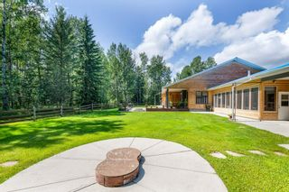 Photo 42: 50206A RR 91: Rural Brazeau County House for sale : MLS®# E4236017