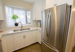 Photo 19: 246 Allan Crescent SE in Calgary: Acadia Detached for sale : MLS®# A1062297